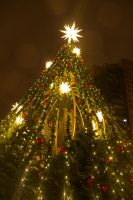 Christmas Tree at the Vancouver Christmas Market by anonymous-dreams