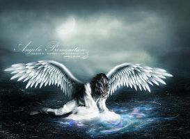 Angelic Premonition by Nightbird09x