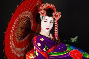 Maiko - Geisha Part II by Naraku-Sippschaft