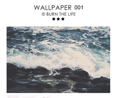 Wallpaper 001 by Burn-the-life