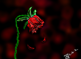 A Dying Rose by maxst5011