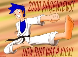 Flying Kick - 2000 Pageviews by Agu-Fungus