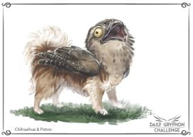 Gryphon Challenge 08 : Chihuahua and Potoo by GaiasAngel