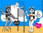 Malmsteen and Whitnee - Volleyball Match by CaseyDecker