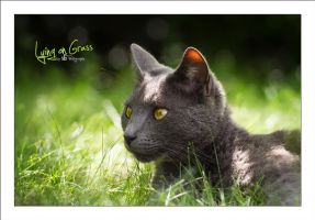 Lying on Grass by sG-Photographie