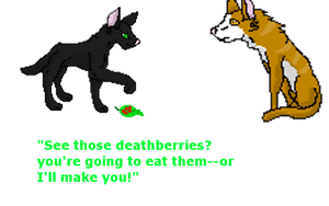 Hollyleaf and the deathberries by xX-NIGHTBANEWOLF-Xx
