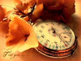 time goes by... by meow-melina