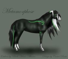 Metamorphose -contest- by abosz007