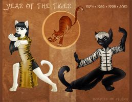 Year of the Tiger by tibek