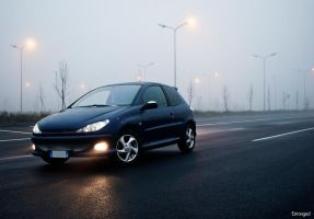 Peugeot 206 II by Estranged89