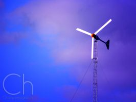 Blowin' In The Wind by Champineography