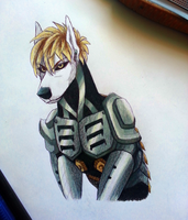 Genos traditional by Ziboe