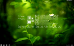Rainmeter Delicate preview by perv88