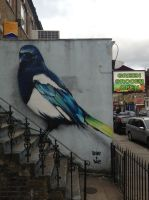 Blackstock Road Magpie by Boe-art