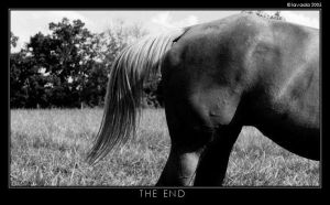 The End -black and white- by Scruffyvada