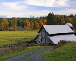 Autumn in the country by LarryRaisch