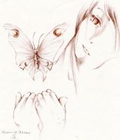 Butterfly by cerasum