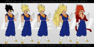 All Forms of Vegetto. by moxie2D