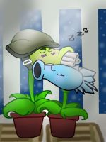 PvZ: NIGHT AND SLEEP!!!(Request) by cat-dog2001