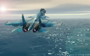 Sea Flanker by Distantstarr