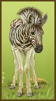 Brenda's Birthday Zebra by Dustmeat