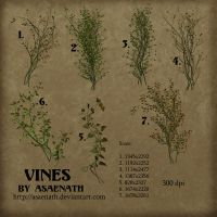 Vines by Asaenath by TUBE-TRADERS