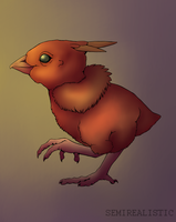 Realistic Torchic by SemiRealistic