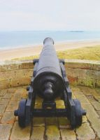 Cannon 2 by ef-barber