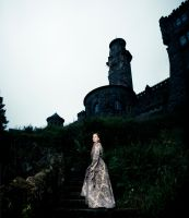 The Lady and the Castle by Makisai