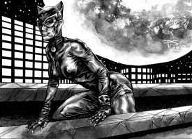 CATWOMAN 1 by PAULSWAIN