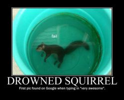 Poster - DROWNED SQUIRREL by E-n-S