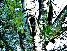The Grim Reaper's Tree House by Alonewithmyself