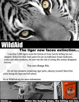 WildAid Flyer by HeWhoWalksWithTigers