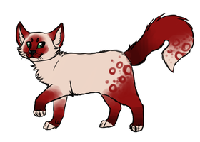 kitty design 06 by miaowstic