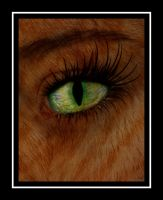The Cat Eye by MillerTime30