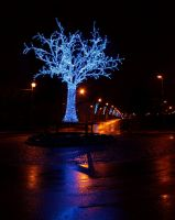 Christmas Lights 2012 by YunaHeileen