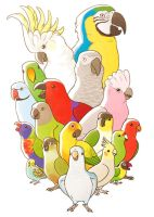 Parrot Party by jentuyet