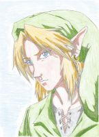 Link close up by starnova63