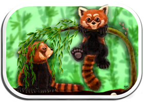 Little red pandas by CrazyGirl1989