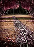 Red Line by LaCiel