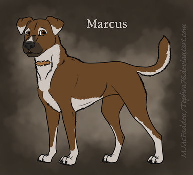Marcus by Tephra76