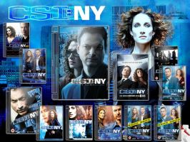 CSI NY DVD Case v2 Pack by gandiusz