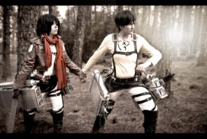 Snk - Don't give up by Hikari-Kanda