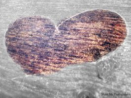 Wooden Heart by k-baby-bug