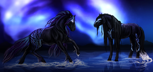 Nothern Lights by Frozenstallion