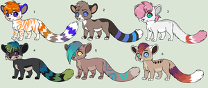 New Auction Adoptables - Closed by Kainaa