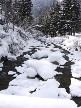 The snow on the river by Gueule-de-Loup