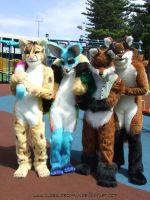 Vixen Made Fursuits Group by Vixen8387