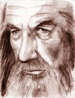 Gandalf the Grey by Caelkriss
