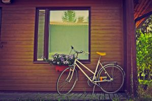 Lomography 15 by poutiainen